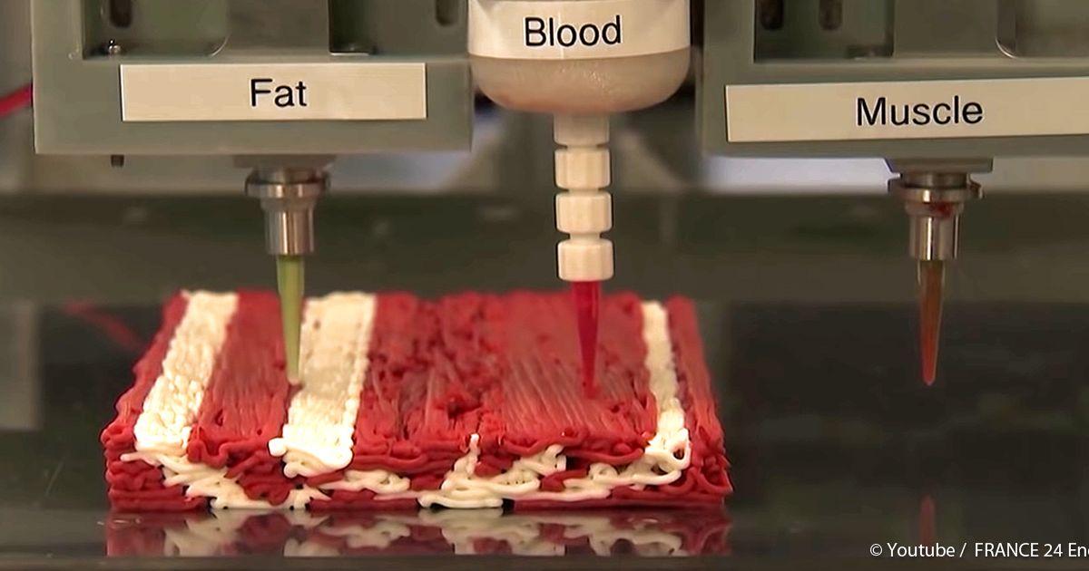 Fleisch 3d Drucker